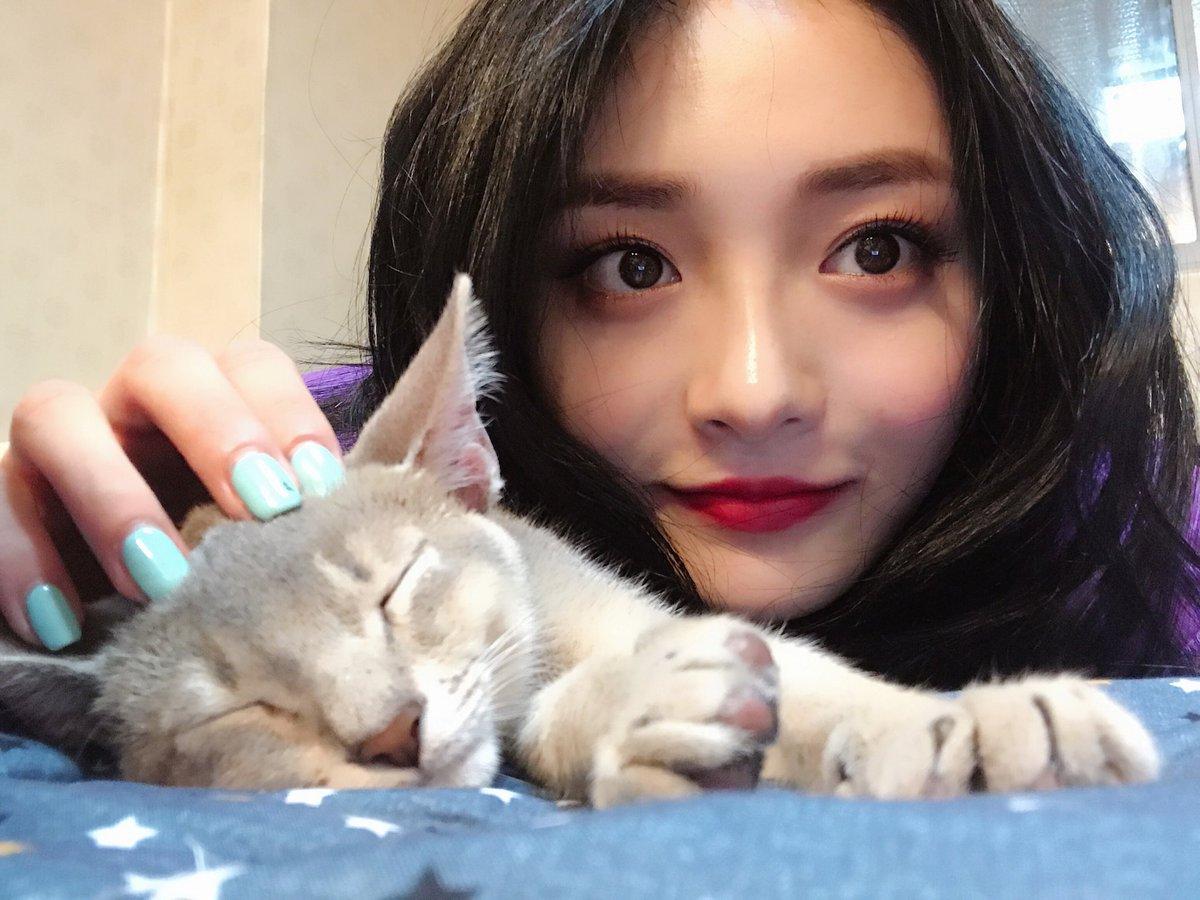 Imagini pentru Kyulkyung and cat