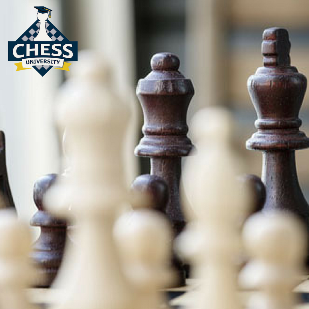 A university researcher created an algorithm that in just 72 hours taught itself to go from 0 to win an international chess tournament. #ChessUniversityOnline #LearnChess #KairavJoshi #checkmate #checkmatetips #checkmatemoves #facts #chessfacts