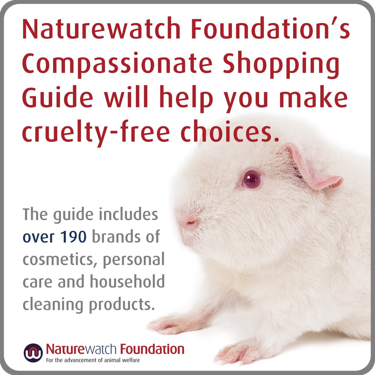 The #CompassionateShoppingGuide will help you find truly #CrueltyFree brands that don't benefit from animal testing. Buy your copy: http://ow.ly/sraC30jOk4W ...