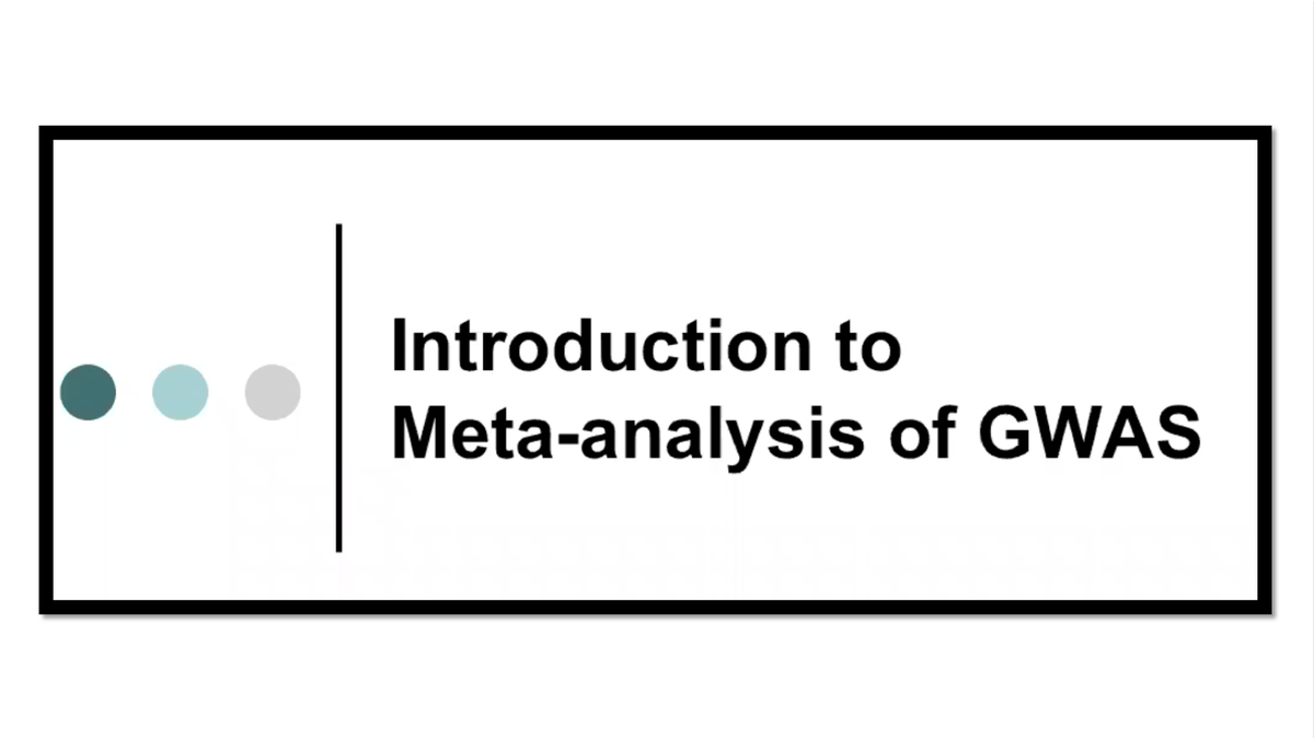 introduction to meta tags Use meta tags/data columns to tag documents, rather than recreating network drive folders stuffing documents in folders is such an old school meta tags are the way to go.