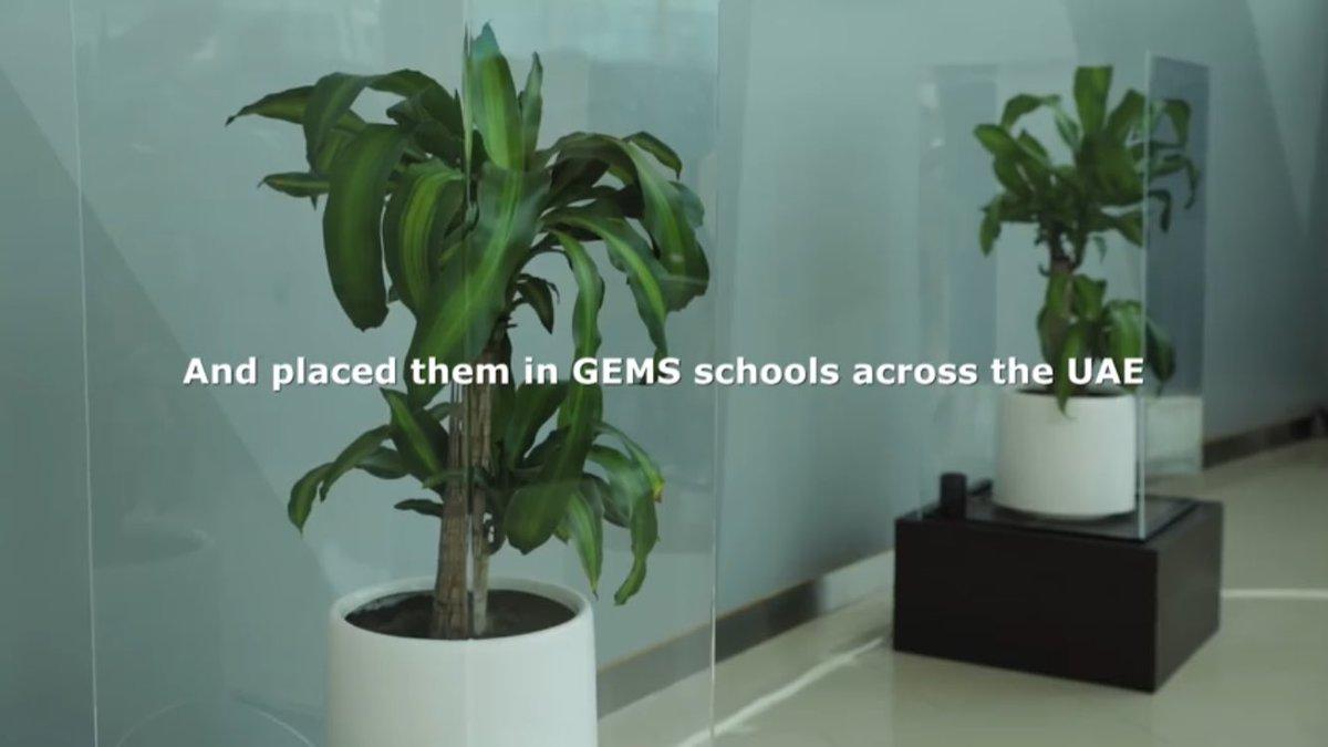 """そもんず on Twitter: """"同じ植物..."""
