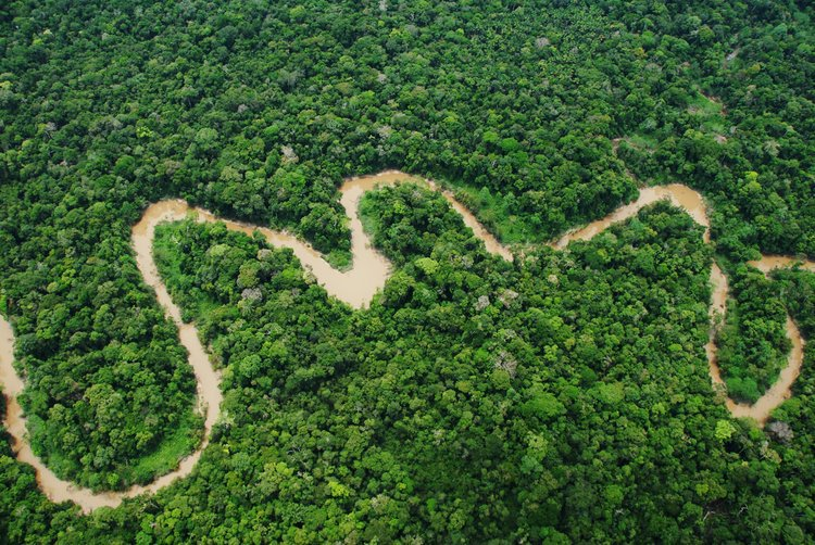 Perus new national park will protect over a million acres of forests in the Amazon #AnywherePeru #AnywhereVacation ow.ly/sMPk30jLxUG