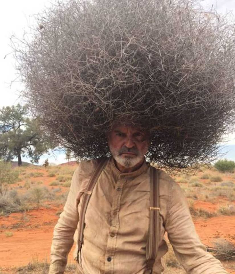 Prehistoric Mojo On Twitter Nice Hair Style But Is It Something Artistic Installation Experimental Or There S A Simple Explanation Welcomet0nature Whyq Natural Afro Https T Co Aztgmaxwkj