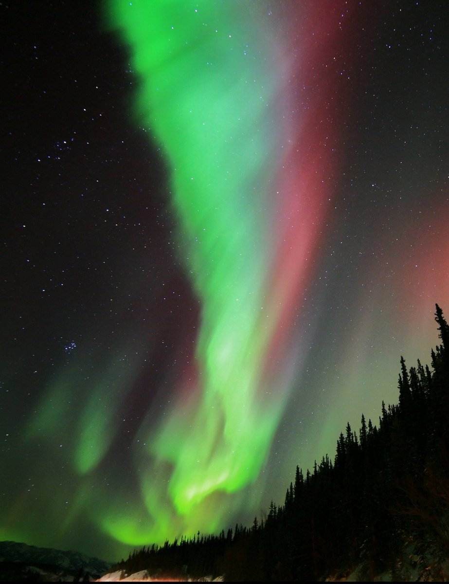 Teresa On Twitter The Northern Lights Nature The Sight Filled