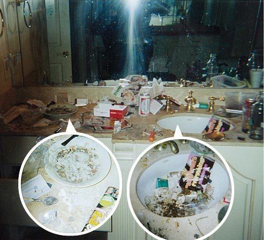 "Joe Coscarelli on Twitter: ""Pusha T ""Daytona"" album cover is a tabloid photo of Whitney Houston's bathroom 😬😅… """