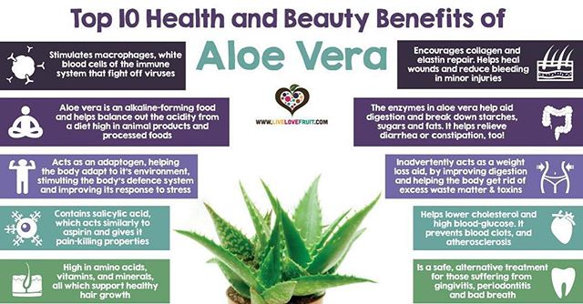 The benefits of Aloe Vera are numerous! What do you use it for? . . . #hosk #aloevera #LoveATreeDay #stkitts #me...  http:// zpr.io/n2DEx  &nbsp;  <br>http://pic.twitter.com/dZVX2nlL5A
