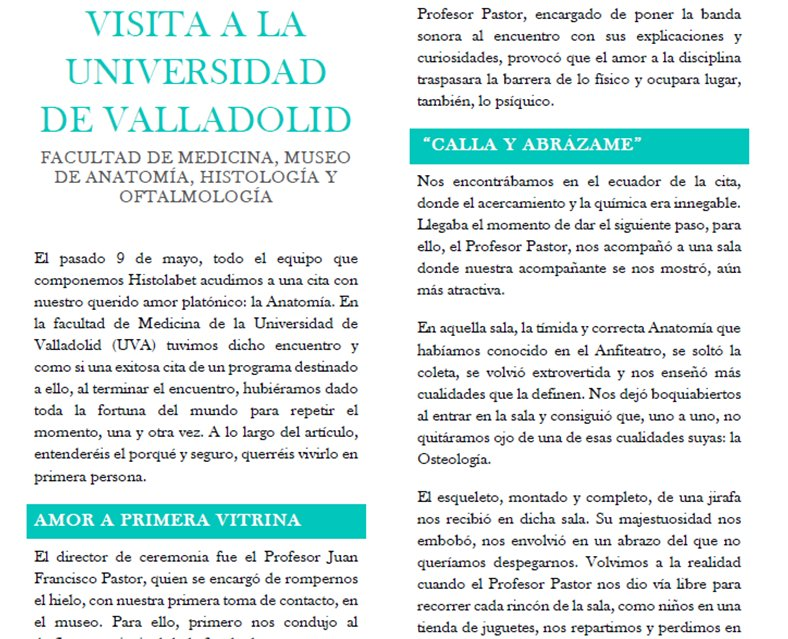 Dorable Que La Banda Anatomía Regalo - Anatomía de Las Imágenesdel ...