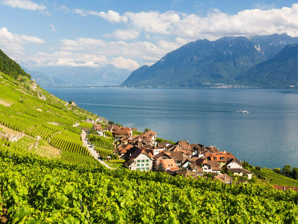 Where to eat, drink, and stay on Lake Geneva. https://t.co/iT3DXtIl0J https://t.co/pAO79i5z7u