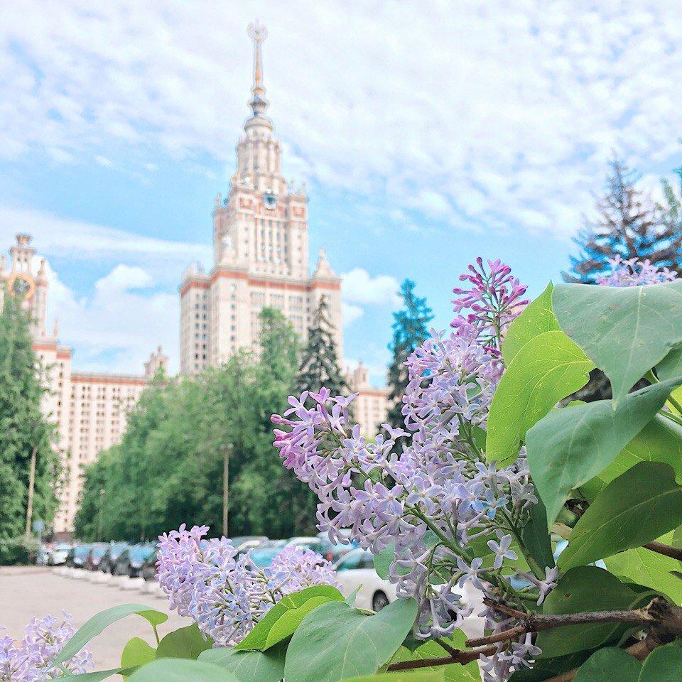 Автосвалка в москве фото
