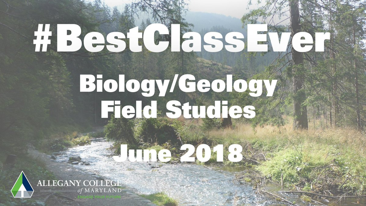 If you would like to earn science credit while studying in the great outdoors, Field Studies is the class for you.  Hiking, camping, hands-on study.     https://www. facebook.com/alleganycolleg eofmaryland/videos/1654643017923323/ &nbsp; …   #EngageYourFuture #alleganycollegeofmaryland #ExperienceACM #science #FieldStudies #BestClassEver<br>http://pic.twitter.com/hQSmXWTEgY