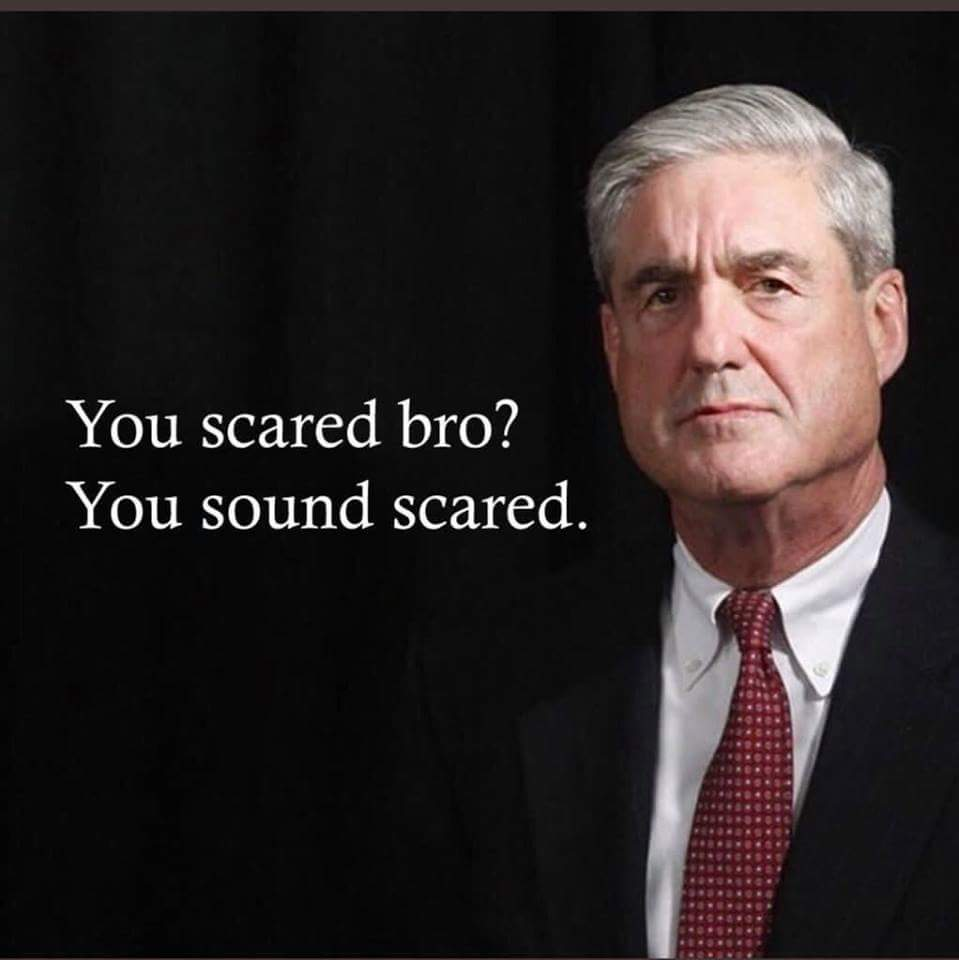 @realDonaldTrump - Says the Russian puppet who fears he is being found out. You sound scared Bro!<br>http://pic.twitter.com/GBbDrRWKNc