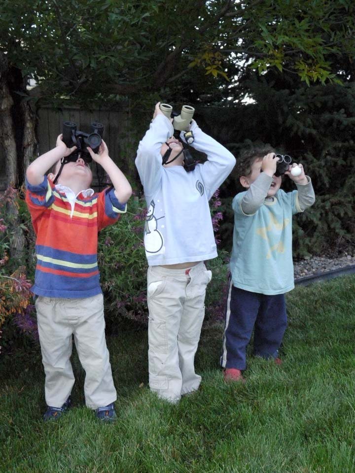 THE BEST POSSIBLE ADVICE IN ALL OF BIRDING: START YOUNG. Listen to Nate Swick and Ted Floyd discuss this Prime Directive of Nature Study over at The @ABA Podcast: tinyurl.com/ybqnfobl
