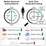 """Early Time-Restricted Feeding Improves Insulin Sensitivity, Blood Pressure, and Oxidative Stress Even without Weight Loss in Men with Prediabetes"" https://t.co/Nw7mXURTxu #IntermittentFasting #InsulinSensitivity #BloodPressure #BioHacking"
