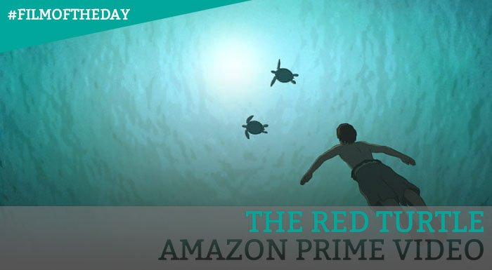 Vodzilla Co On Twitter On Worldturtleday A Reminder That The Wordless Wonderful The Red Turtle Is On Amazon Prime Video Https T Co 1azbte8zsx Filmoftheday Theredturtle Studioghibli Ghibli Https T Co Kbpfibio6l
