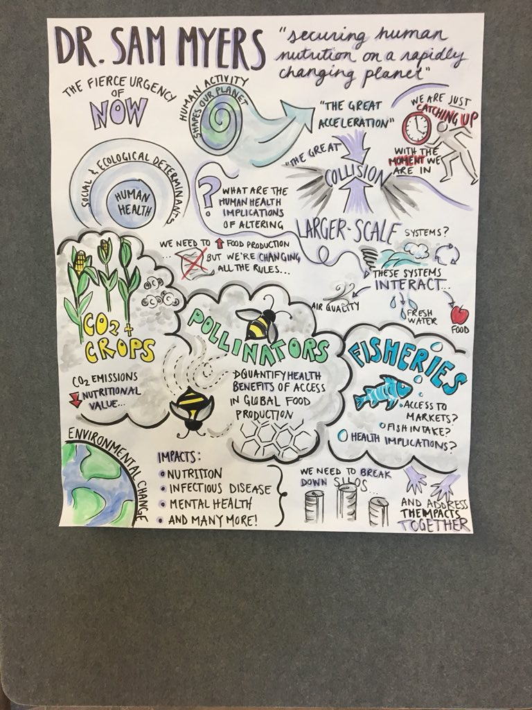Dr. Sam Myers gave a great plenary on securing human nutrition on a rapidly changing planet. Here's the visual summary! #AFoodSummit @ArrellFoodInst<br>http://pic.twitter.com/ff1mYNeD95