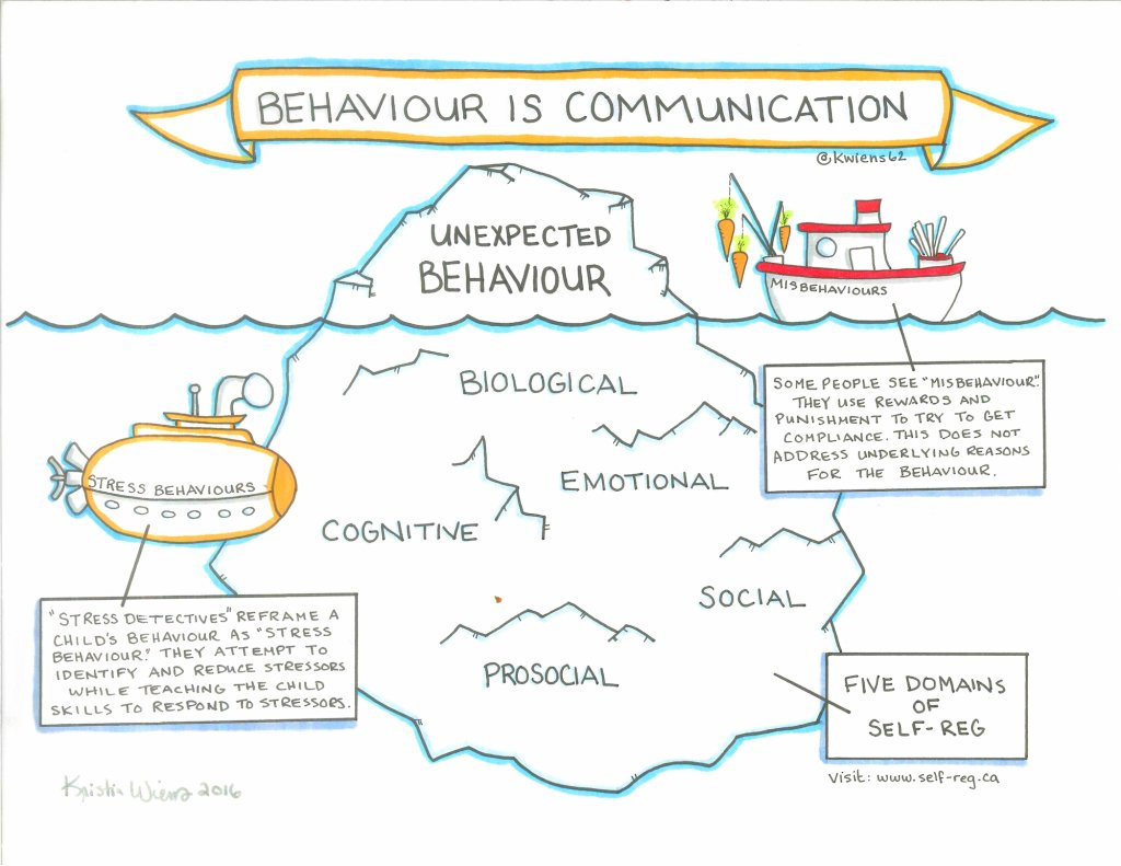 Illness Behavior: A