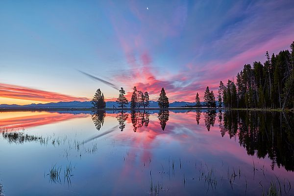 Art for the Walls! &quot;Gull Point At Sunrise&quot; by Jon Glaser  https:// buff.ly/2uvpokE  &nbsp;   #Travel #vacation #yellowstone #gift #sunrises #ArtLovers <br>http://pic.twitter.com/UmM0VLkLO8