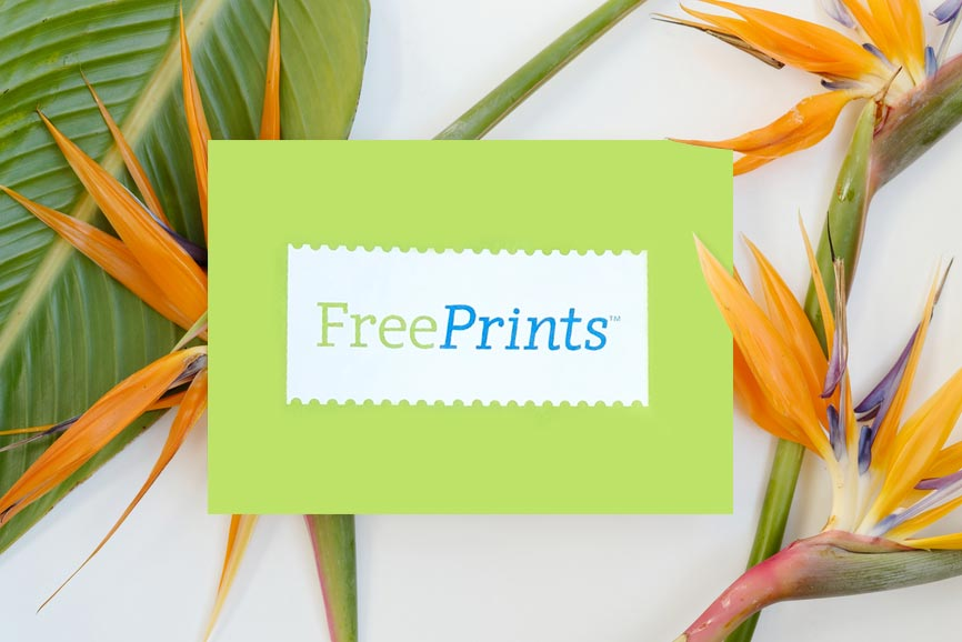 Freeprints On Twitter Will Today Be A Green Envelope Delivery Day