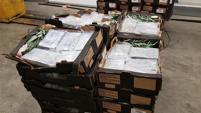 Drugsvangst bij bedrijf Galgeweg betrof 500 kilo cocaïne (update) https://t.co/igg2gh8afC https://t.co/sr3QJfN1VM