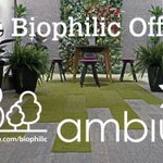 Image for the Tweet beginning: Welcome @Ambius @AmbiusUK who are