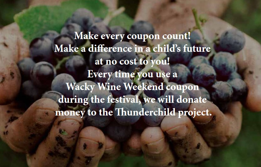 1Week to #wackywine!! Pay it forward - #Thunderchild is a Wine of Origin Robertson blend produced by wineries in the valley. 100% of the profit are donated to Die Herberg Kinderhuis. @RobertsonWineV is a proud supporter &amp; helped raised money in 2017:  https:// bit.ly/2IYdawb  &nbsp;  <br>http://pic.twitter.com/F3ntRmHDCZ