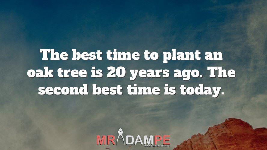 Adam Llevo On Twitter The Best Time To Plant An Oak Tree Is 20