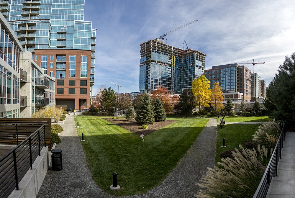 Expanded Options for Complying with Denver's Green Roof Rule Could Include Not Having a #GreenRoofs @DenverGreenRoof https://t.co/RUUvayZMVZ
