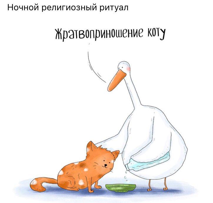 Картинки про гусей смешные