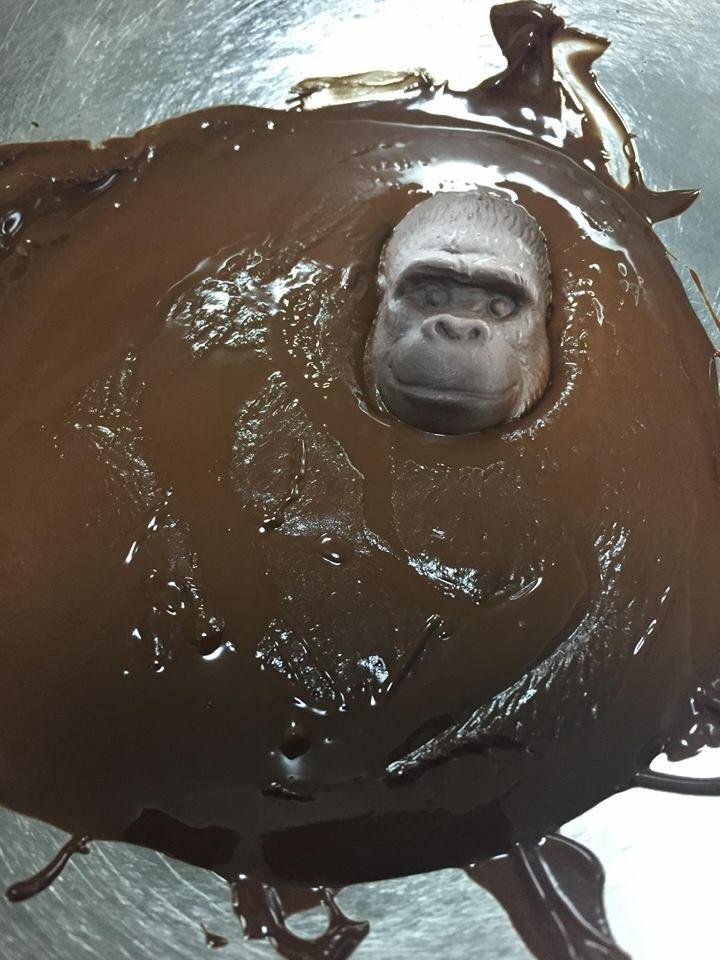 硬すぎるゴリラの形をしたチョコw溶かそうとした結果衝撃の結末にw
