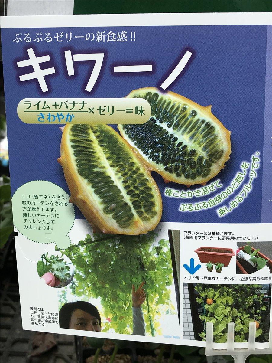 謎のフルーツの味を説明する方程式、意味不明なので見て