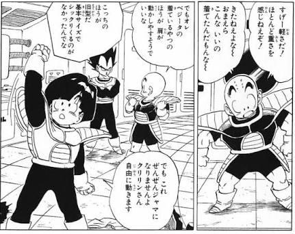 サイヤ 人 戦闘 服