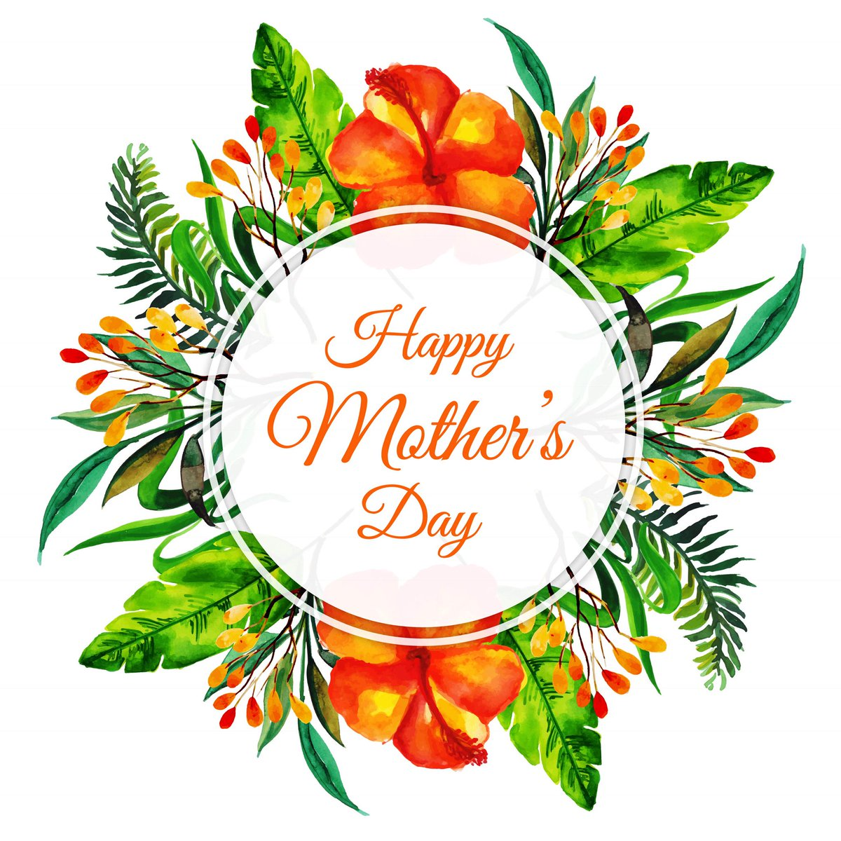 w connection fc on twitter happy mothers day to all our queens to our mothers wives girlfriends and administrators thank you for your continued and