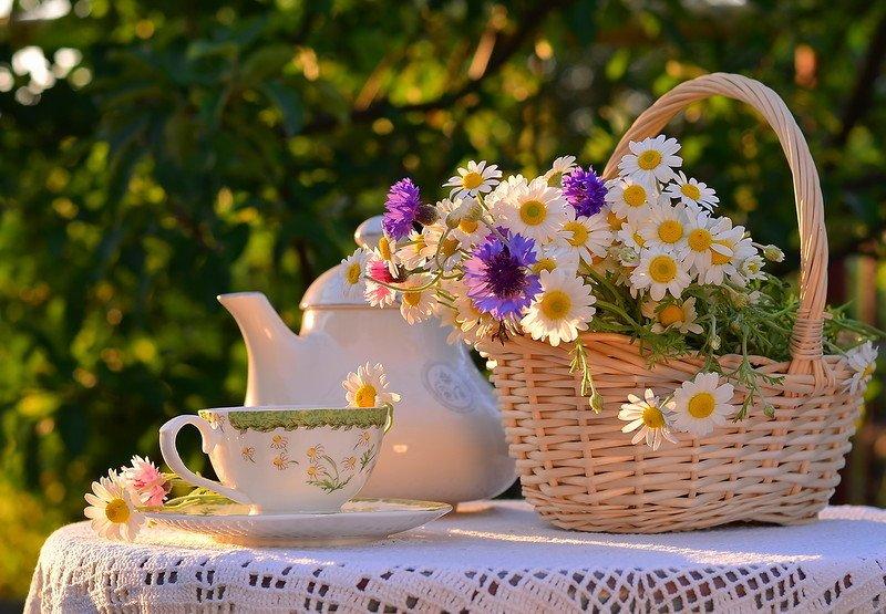 Доброе утро картинки красивые радость, картинки именами светлана