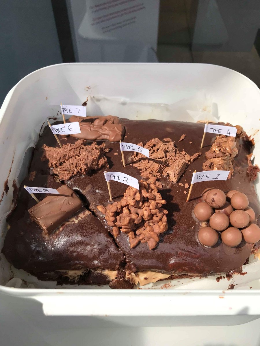 No Chocolate Was Harmed During The Baking Of This Cake GBBO PaulHollywood PrueLeith Sanditoksvig Emilys For ChangingPlaces Disabled Toilet