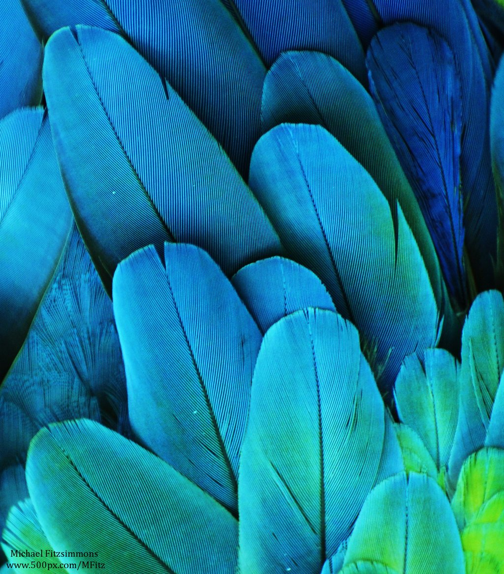 бирюзовый цвет картинки для вдохновения эстрадная артистка