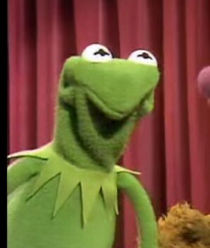 Image result for kermit angry face