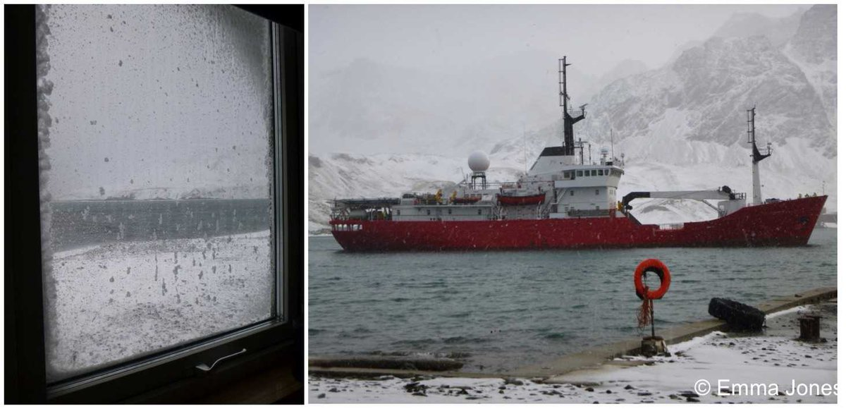 In sun, rain, wind, or at this time of year snow, Pharos SG is hard at work patrolling the #SouthGeorgia #MarineProtectedArea <br>http://pic.twitter.com/HQaRpuWHDD