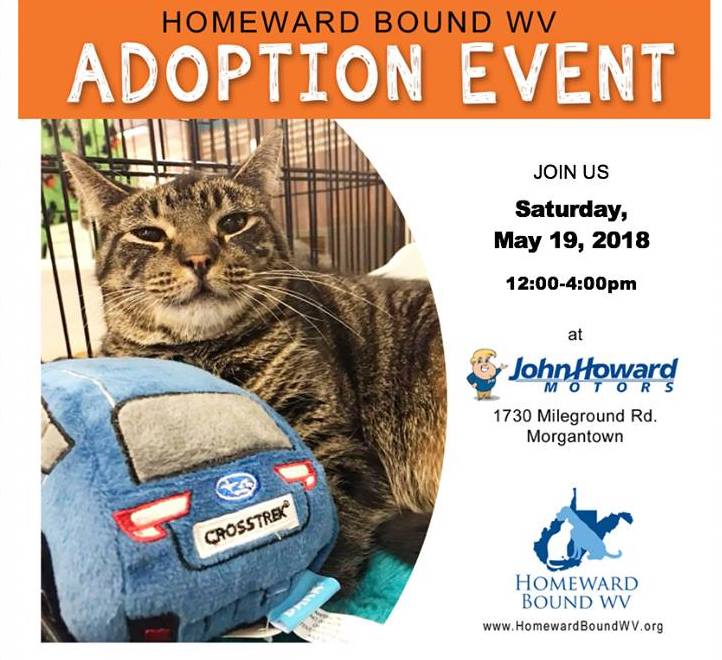 Join us this Saturday, May 19 from noon to 4 PM for the Homeward Bound West Virginia Adoption Event. Come by and meet your new best friend! ...