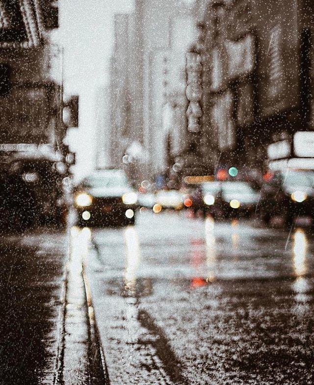 Instagram: That perfect touch of rain || Enhanced using @lensdistortions by @okaymotion #LensDistortions instagram.com/p/Bix_iGbFTQH/