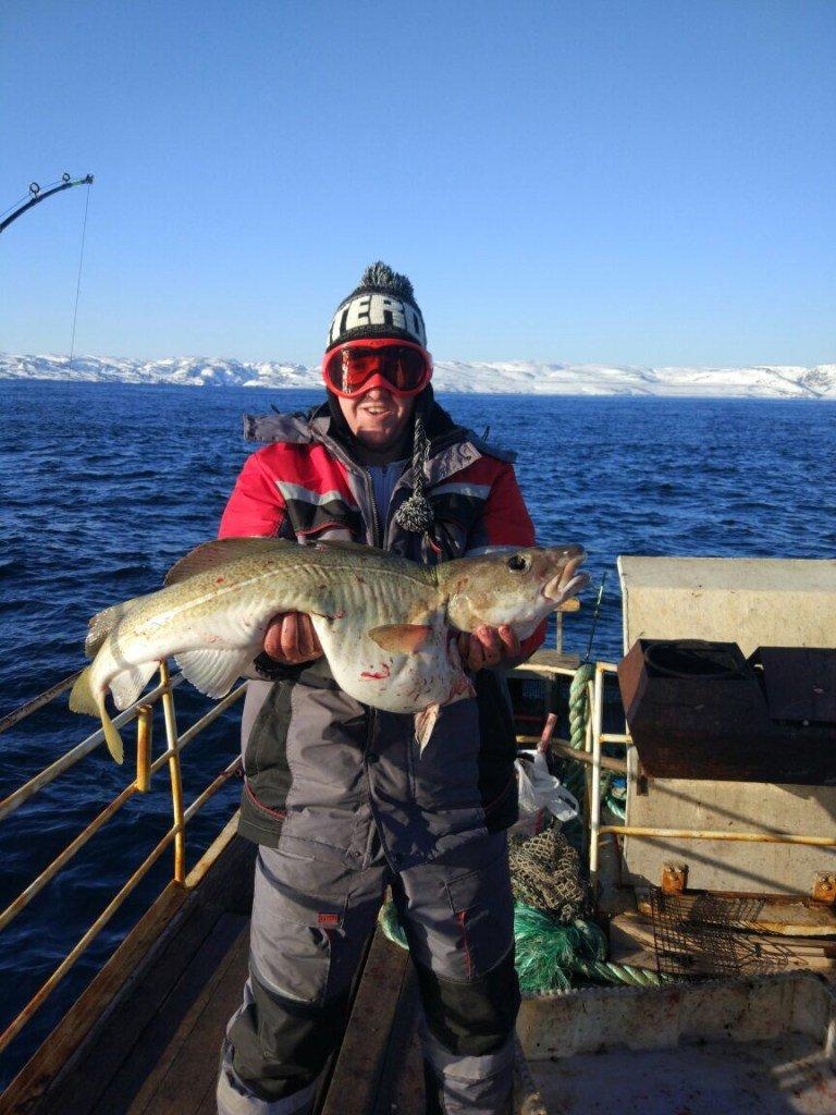 Баренцево море треска рыбалка