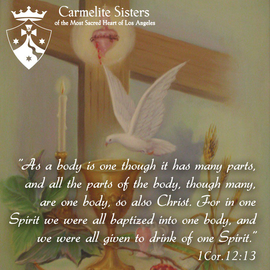 Carmelite Sisters On Twitter As A Body Is One Though It Has Many