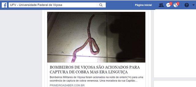 Mulher confunde linguiça com cobra e pede socorro aos bombeiros em MG https://t.co/wsYYel02MB #G1