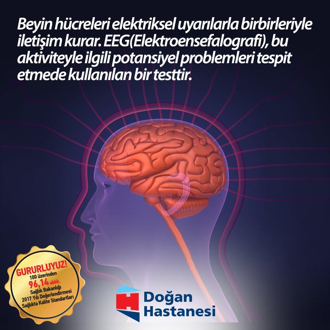 İnsan Beyni EEG