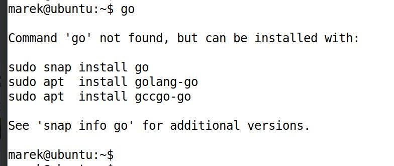 install golang ubuntu