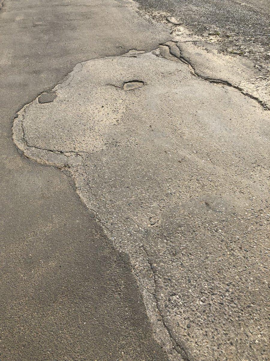 千葉県の山道の車道が擦り減ったりして、カピバラに見えてしょうがないんですが、私だけですかね?笑
