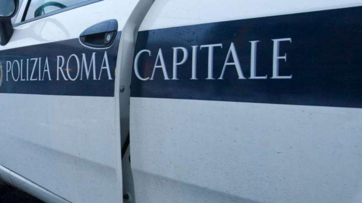 Roma, operazione in campo nomadi: sequestrate armi e mazze #cronacaroma https://t.co/oPc7BGw5IJ