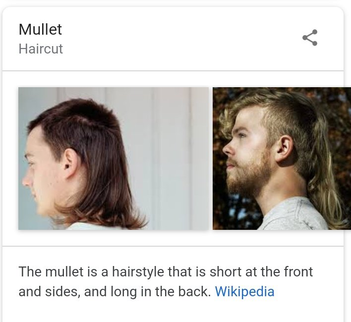 Mullet Haircut Wiki - The Best Drop Fade Hairstyles