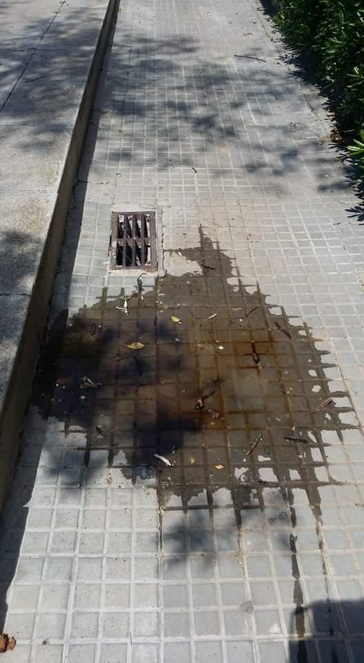 #Zapeando1117 Latest News Trends Updates Images - RubenReyes107