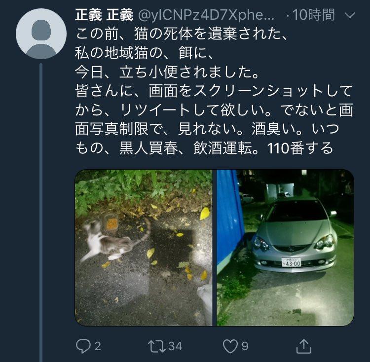 猫 画像 cat image 「私の地域猫」って凄いワードだなぁ。  もし地域一体ではなく個人でやっているのだとすれば、それは自己満足で趣味の領域。周りの迷惑も省みない。  中途半端な活動は不幸なネコを増やすだけ。     0