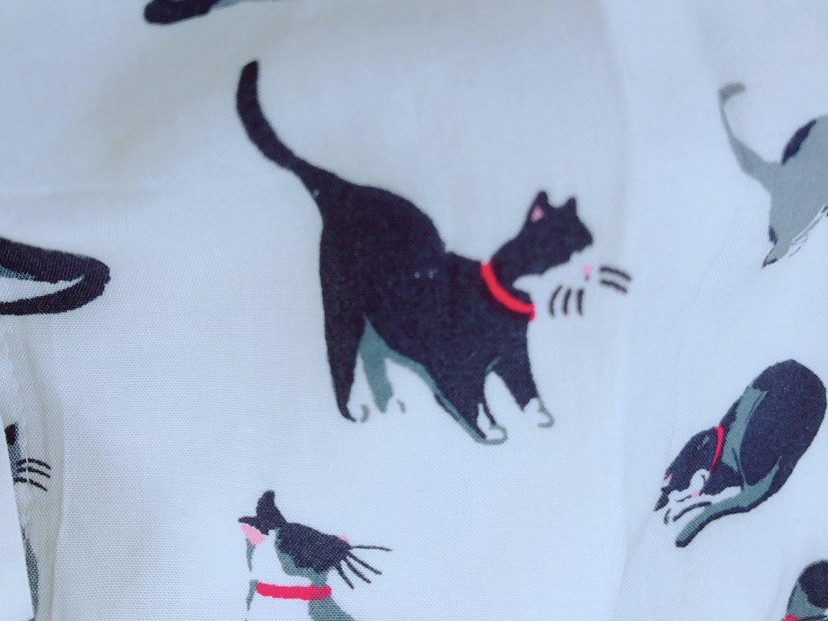 猫 画像 cat image 猫柄のワンピースにモルガナみたいなのいた!!!  0